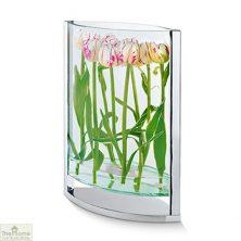 Ellipse Glass Vase