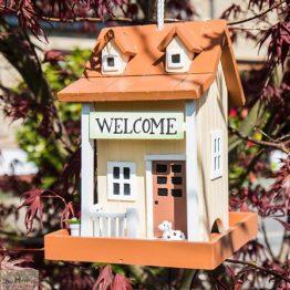 Welcome Home Bird Feeder_1