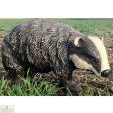 Badger Cub Garden Ornament