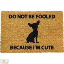 Chihuahua Dog Doormat
