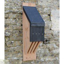 Vincent Pro Bat Box