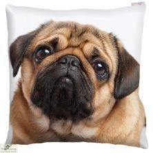 Pug Dog Print Square Cushion